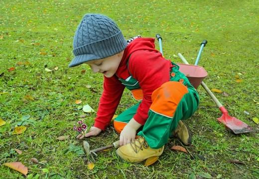 Entretien du jardin : évitez d'être surpris par le changement climatique