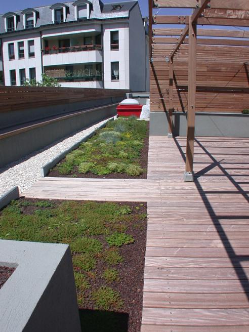 Les toitures végétalisées, écologiques et efficaces