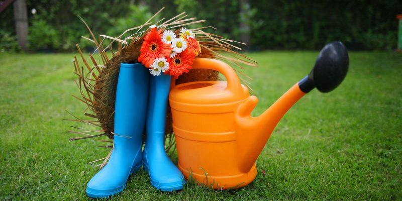 Conseils pour jardiniers débutants