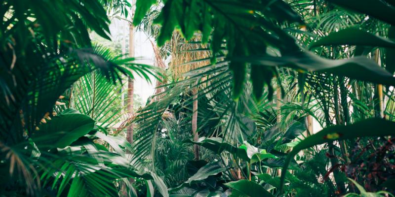 Comment aménager une terrasse pratique et jolie grâce à des plantes artificielles ?