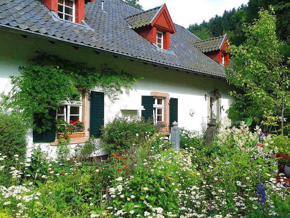 Maison entourée d'un jardin en fiche mal entretenu